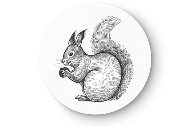 Animal drawing1