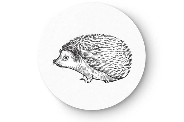 Animal drawing2